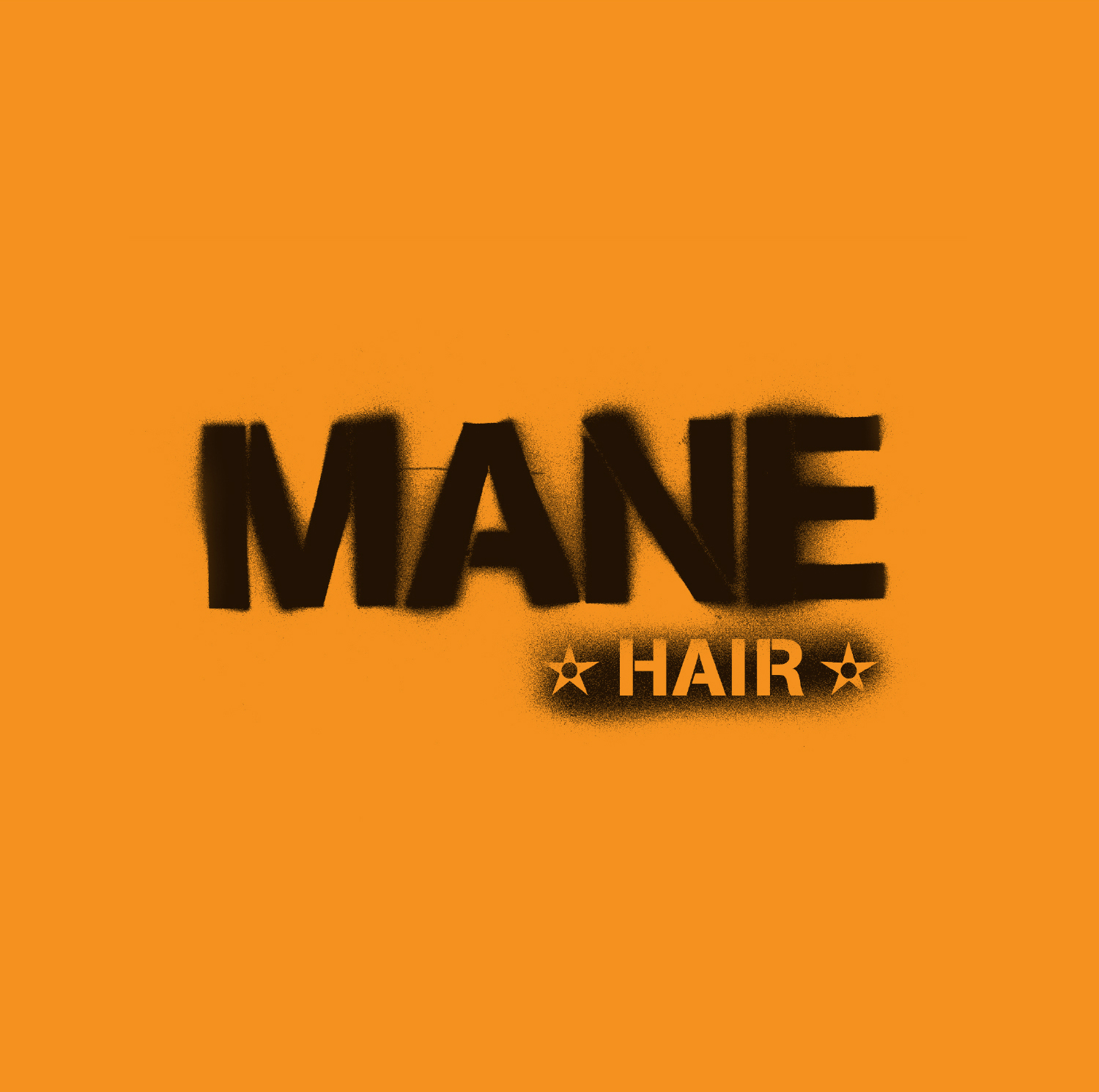 mane-hair-logo-design.jpg